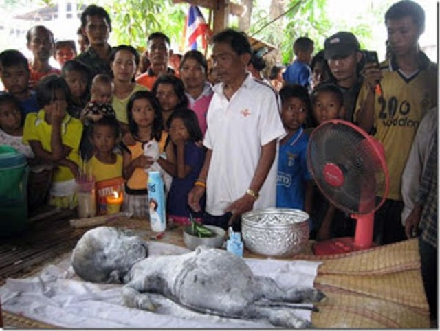 Thailand Cow Gives Birth To Bizarre Humanoid Offspring