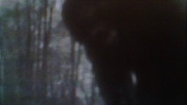 Trap Catches Bigfoot On Camera