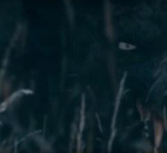 Werewolf head