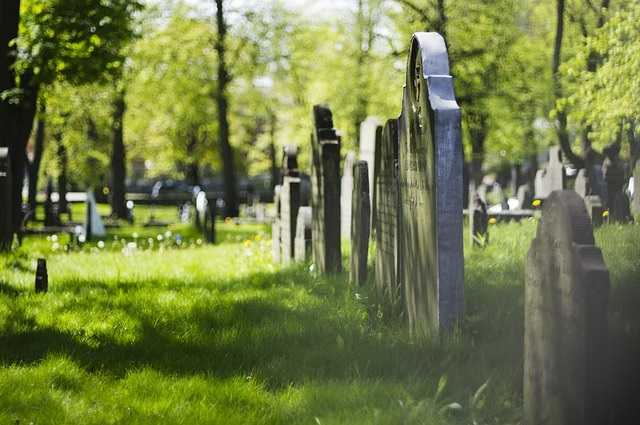Child Gets Pushed By Something Unexplained While Visiting A Graveyard