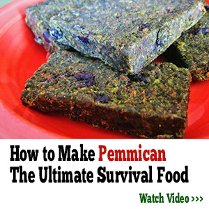 Make Your Own Survival Food
