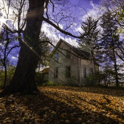 An abandoned ontario house surrounded by autumn leaves