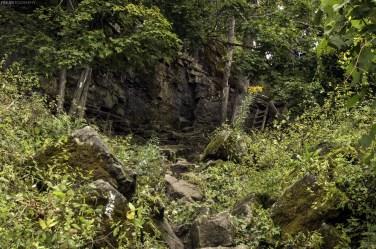 The Bruce Trail along the Niagara Escarpment in Burlington, Ontario.
