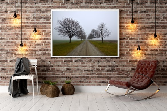 Photography And Framing Options For Your Home Decor Freaktography