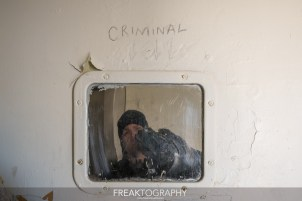 Abandoned Preconfederation Jail House-44.jpg