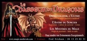 Le chasseur de dragons / magie médiévale / animation avec un authentique dragon de 3m de long