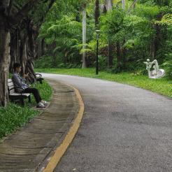 Shenzhen. A quiet moment.