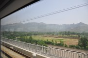 Landscape view from inside train