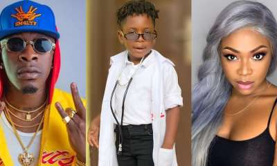 , Majesty: video of Shatta Wale's son encouraging Michy to be brave during canopy walk warms heart, Frederick Nuetei