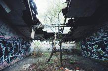 Dak met doorgroeiende bomen in Parc des Oblats