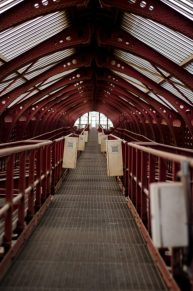 Roof walkway - Antwerp Central Station