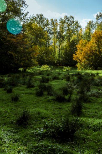 WandelWalhalla-Landscape