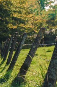 WandelWalhalla-fence poles
