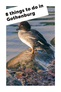 8 things to do in Gothenburg pinterest
