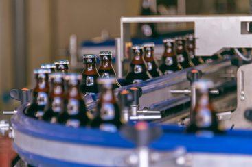 Brouwerij Van Steenbergen-5