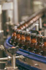 Brouwerij Van Steenbergen-8