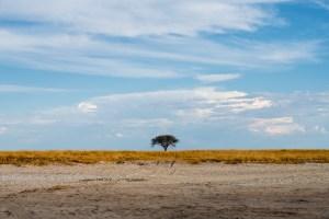 Makgadigadik saltpan one tree island