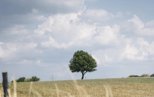 Nordrhein-Westfalen road trip for 3 days