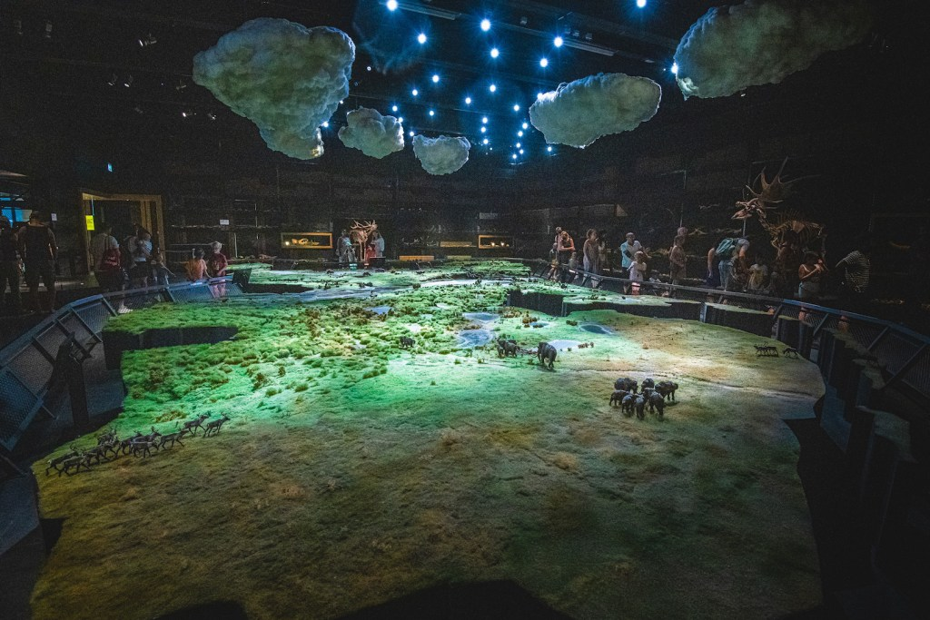 ice age in naturalis