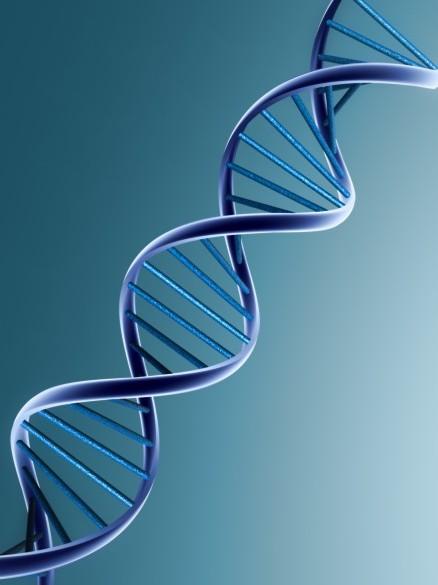 Harvard cracks DNA storage, crams 700 terabytes of data ...