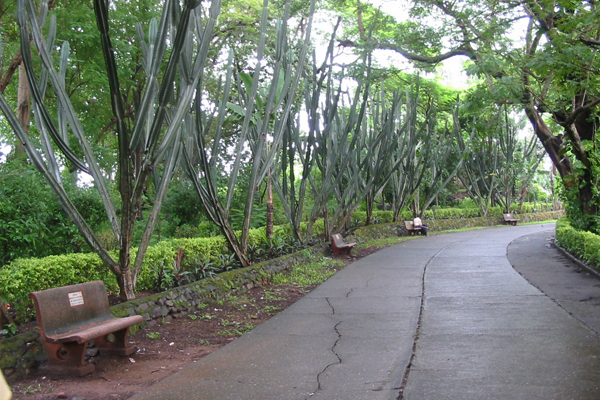 Aarey Milk Colony Mumbai