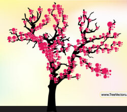 Cherry Blossom Tree Vector