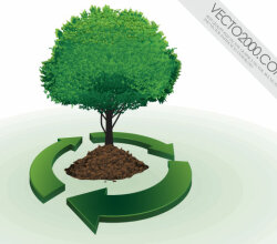 Recycling Symbol with Tree Vector Image Free