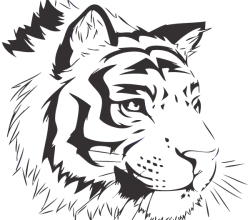Vector Bengal Tiger Image