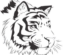 Vector Bengal Tiger Image