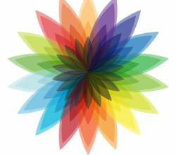 Vector Multicolor Flower Design