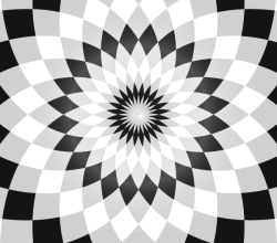 Flower Illusion Vector Free Download