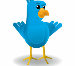Smug Twitter Bird Vector Art