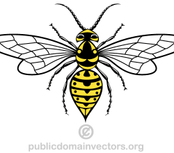 Vector Wasp Image