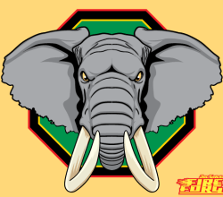 Vector African Elephant Head Image