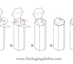 Packaging Dieline Free Vector Template
