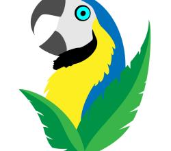Vector Parrot