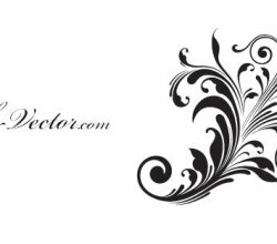 Free Vector Beautiful Flower