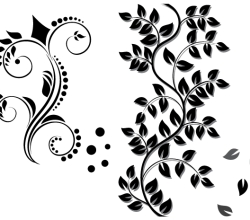 Floral Ornament Vector Graphics Free