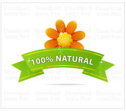 Free Vector Ribbon with Yellow Flower