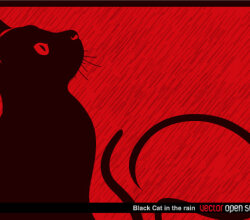 Black Cat in the Rain Vector Illustration