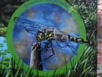 Berlínské dobrodružství: graffiti