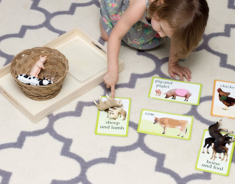 A simple object-to-picture matching activity for toddlers