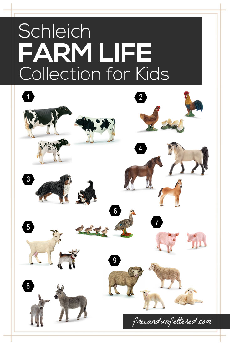 North American Farm Life Collection for Kids - Perfect for Continent Studies, Geography, Zoology, and Open-Ended Play for Children.