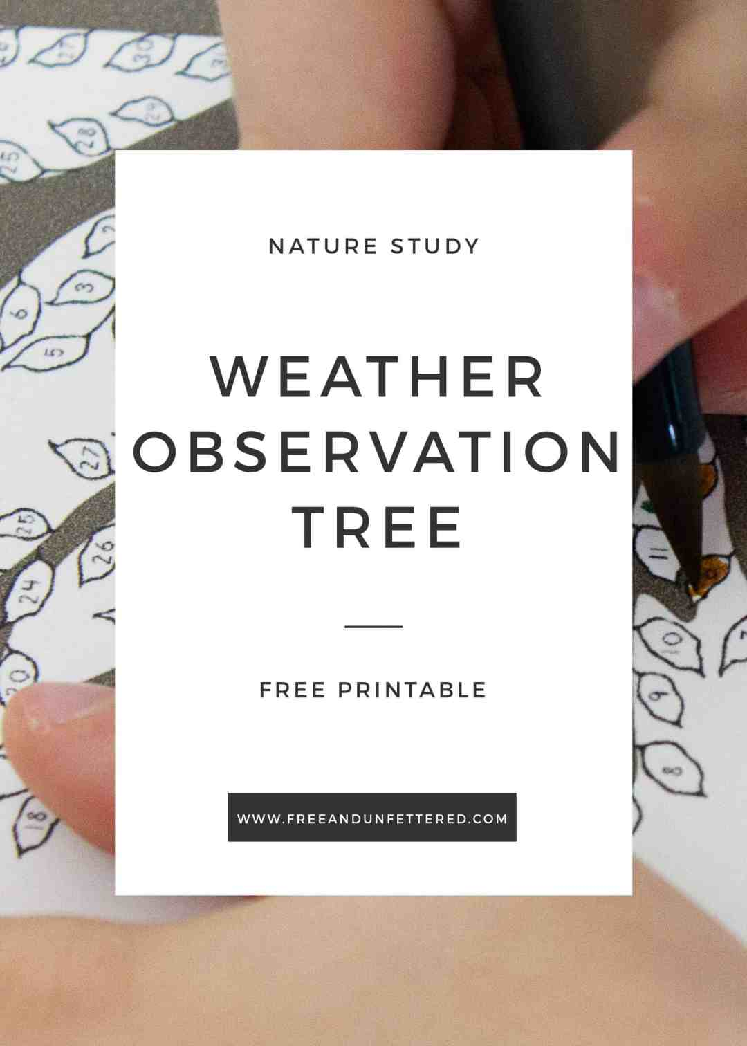 free printable 2019 weather observation tree for nature study with children
