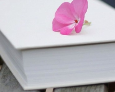 Pink Flower On The Book