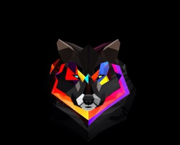 Colorful Wolf Head