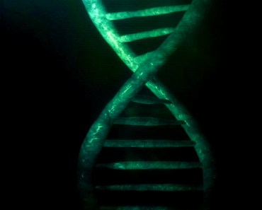 Green DNA Structure
