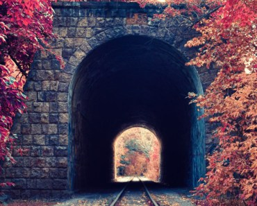 Train Tunnel Autumn