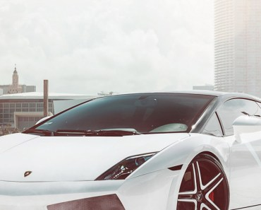 Lamborghini Gallardo Supercar White