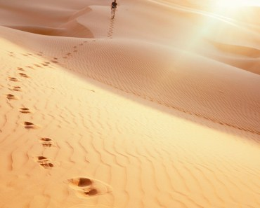 Footprints On The Desert